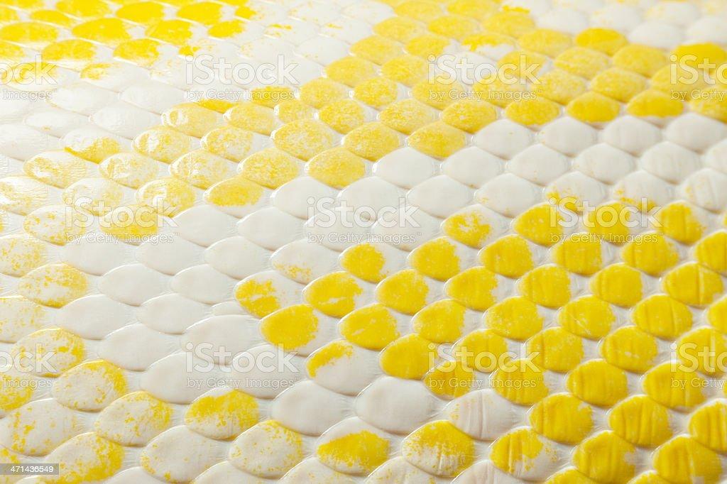 Snake skin backgrounds stock photo
