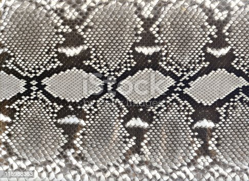 Snake skin dyed black and white. Some of the original browns show through at 100%.