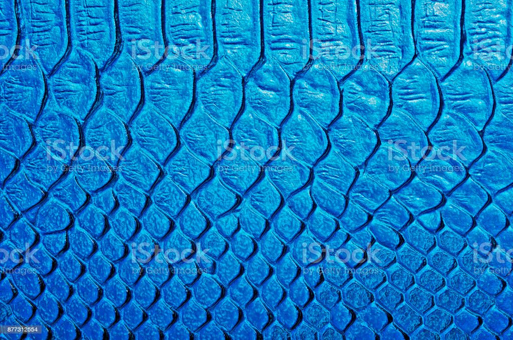 Snake skin, can use as background stock photo