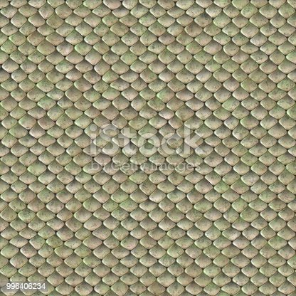 istock snake skin clear texture 996406234