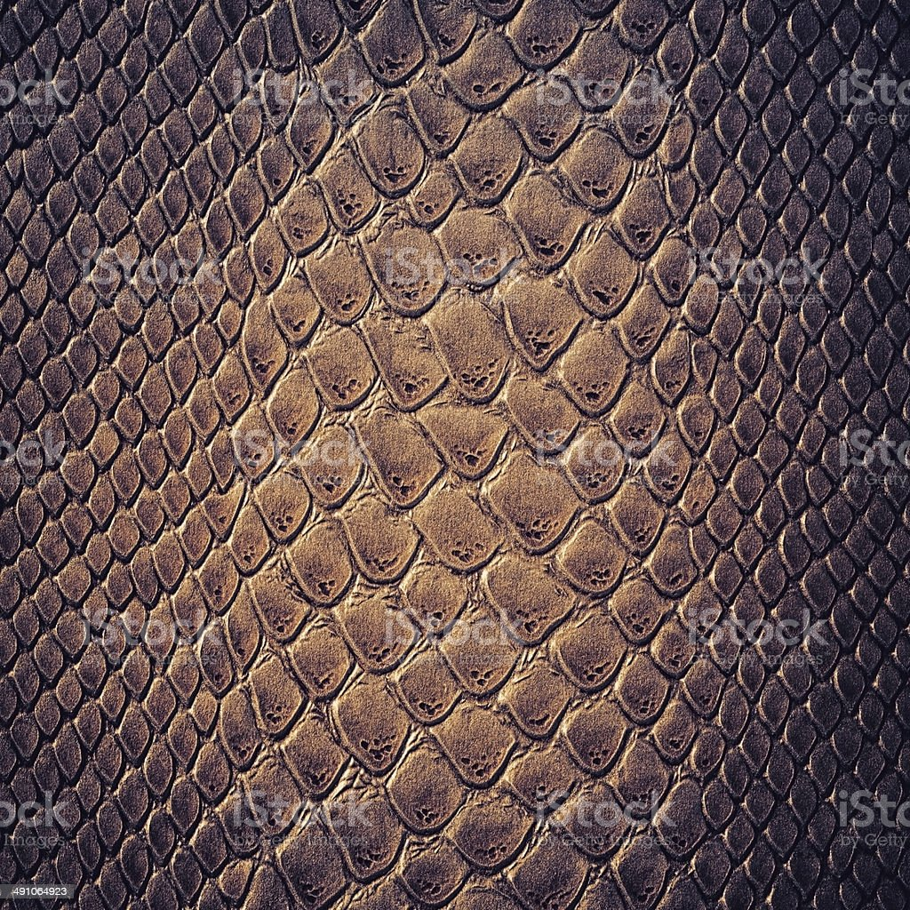 Snake skin leather texture stock photo