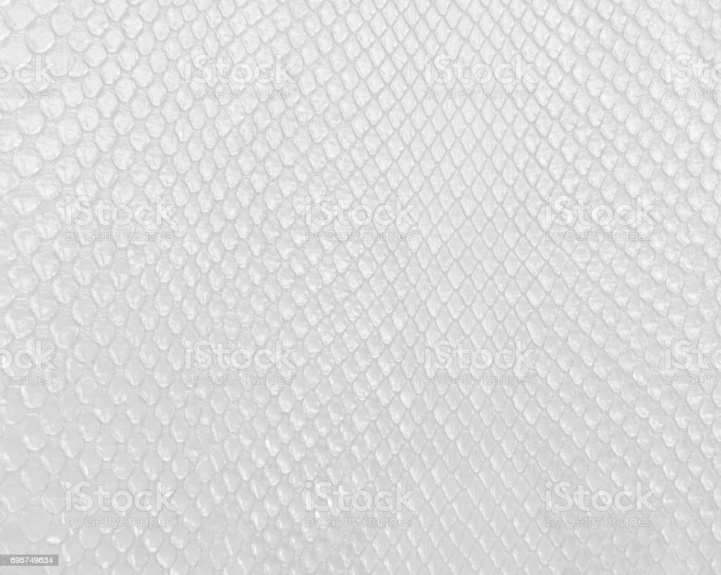 Snake skin texture in white color, modern bright white background. stock photo