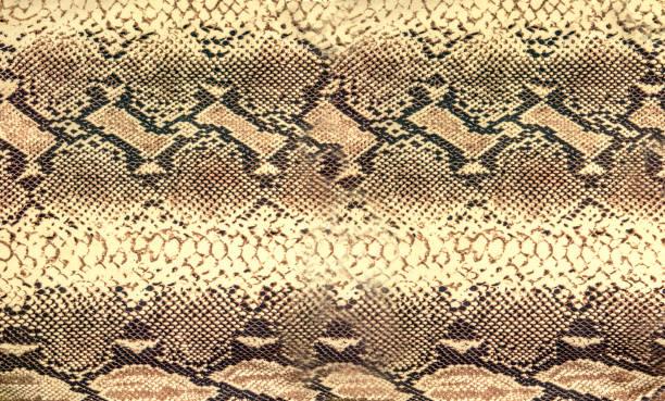 Snake skin Textur. Reptil nahtlose Hintergrund für Design. – Foto
