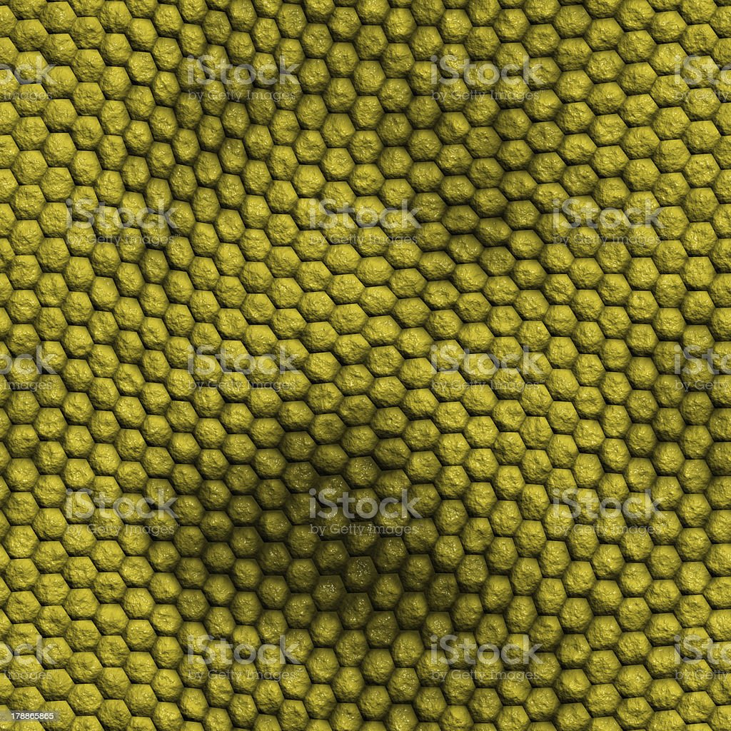 snake skin with the pattern lozenge style royalty-free stock photo