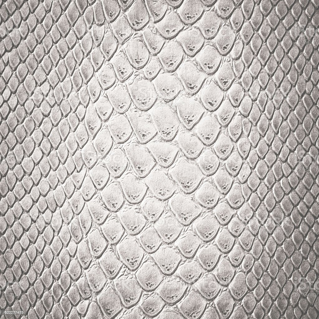 Snake white skin leather texture stock photo