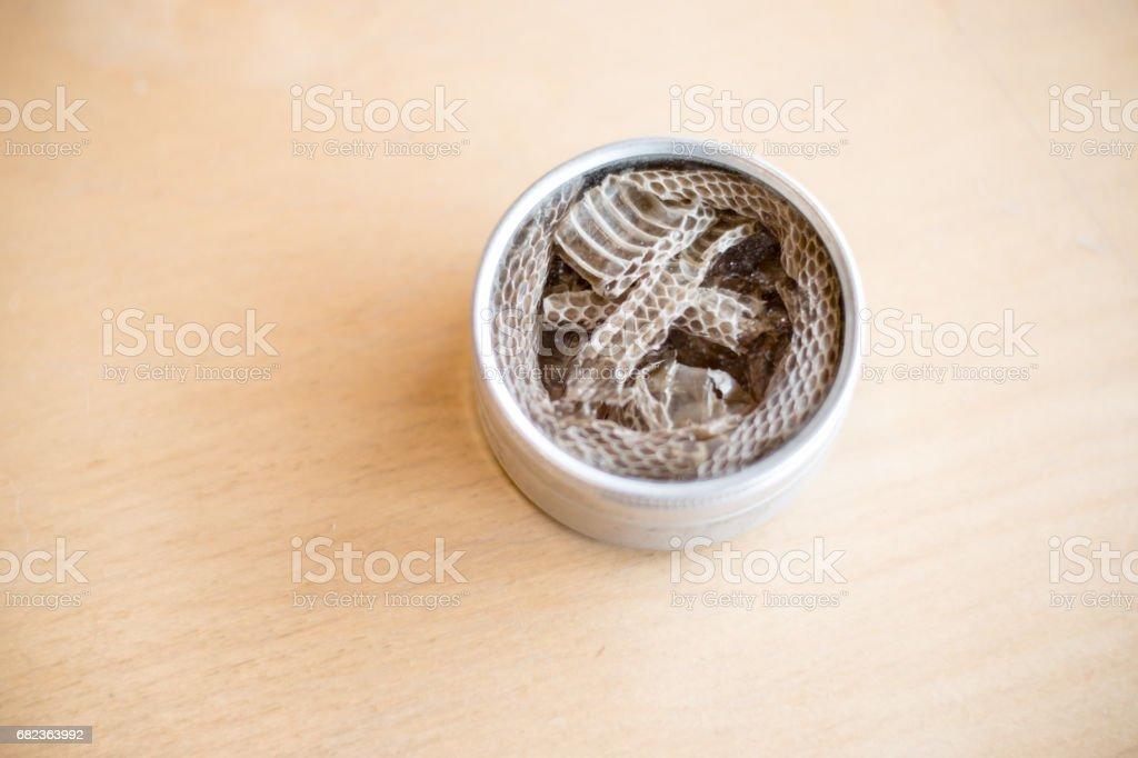 Snakeskin foto stock royalty-free