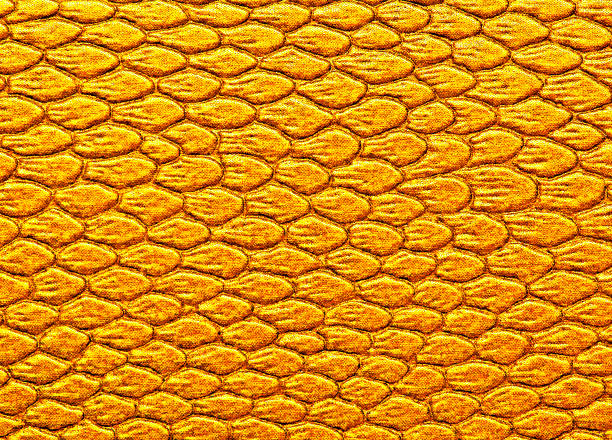Snakeskin texture leather, can be used as background stock photo