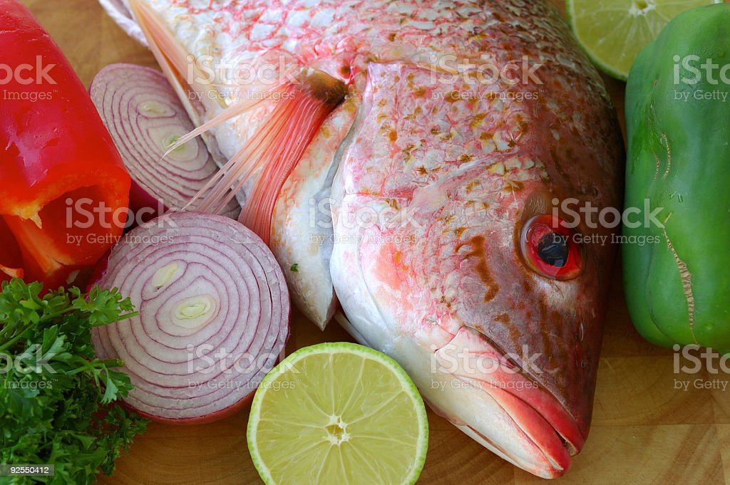 snapper royalty-free stock photo