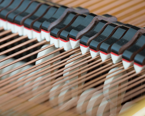snares mutes and hammers inside a grand piano