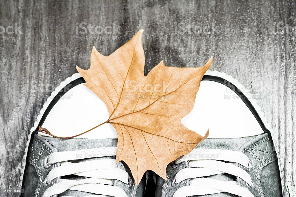 Sneakers with an autumn leaf stock photo