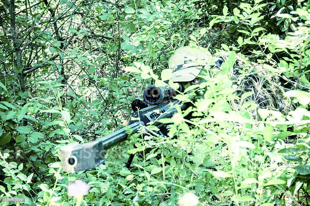 Sniper Hiding and Aiming Barrett M82A1 Rifle in the Woods stock photo