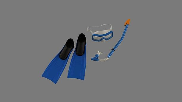 Snorkel top Snorkel top diving flipper stock pictures, royalty-free photos & images