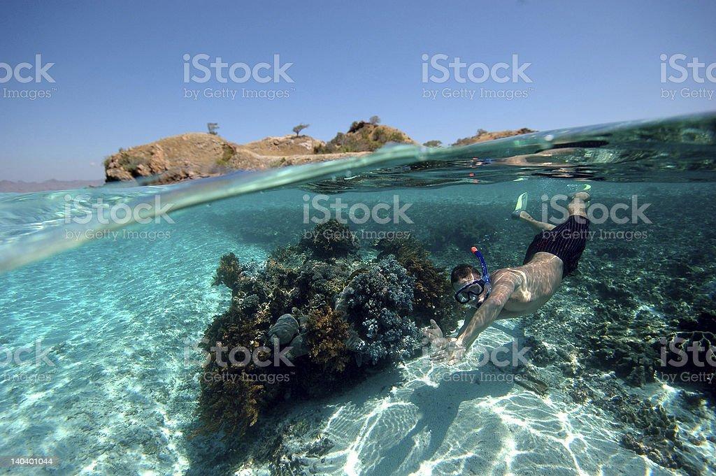 Snorkeler II. stock photo