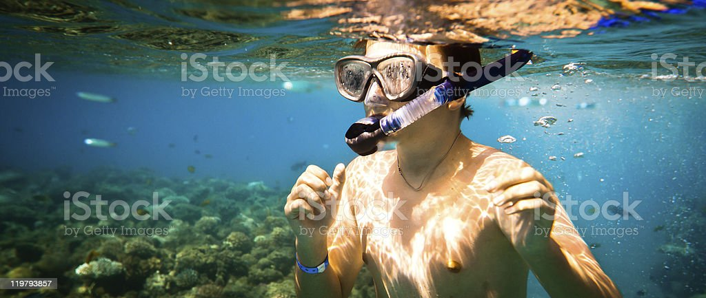 Snorkeler.  Red sea royalty-free stock photo