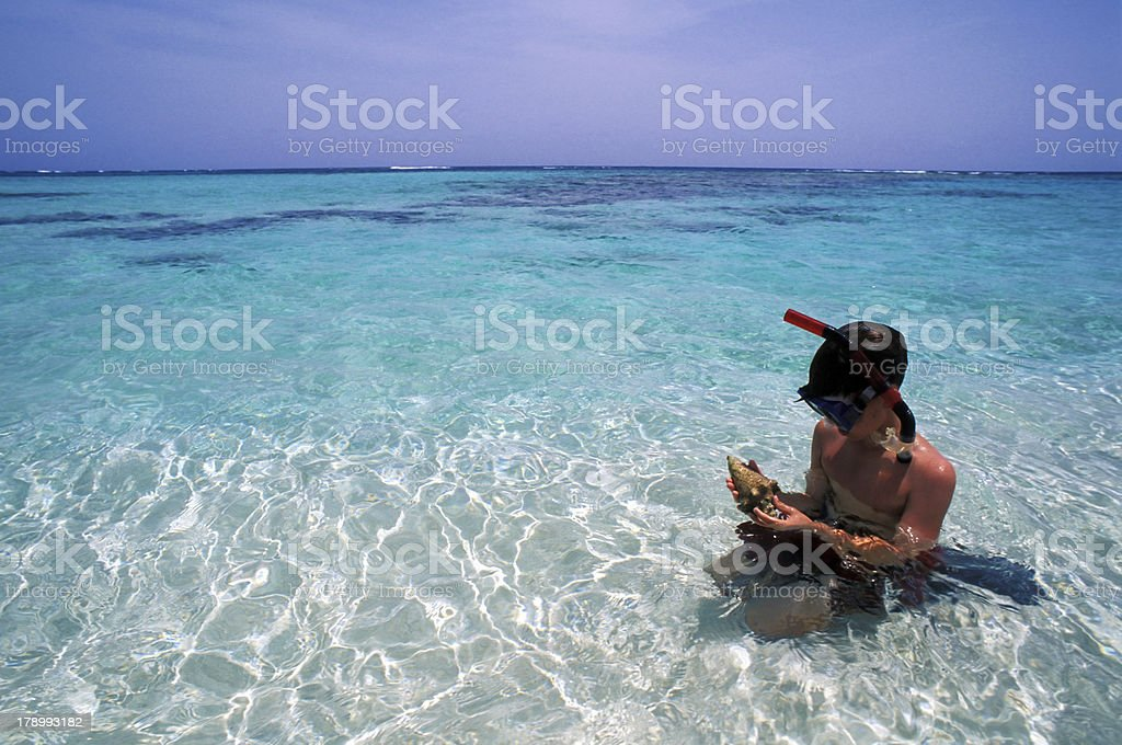 snorkeling in a tropical beach royalty-free stock photo