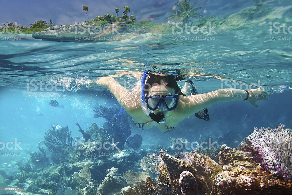 Snorkeling in Carribean sea stock photo
