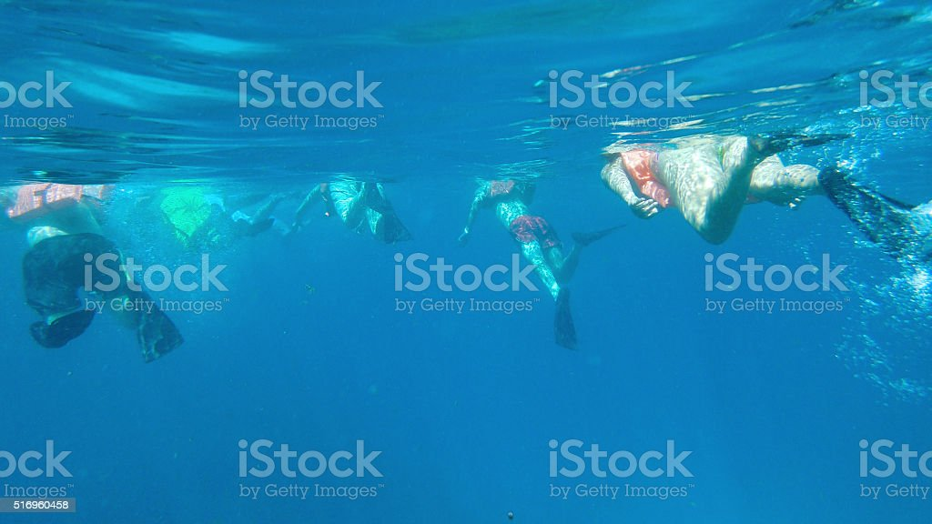 snorkeling in group stock photo