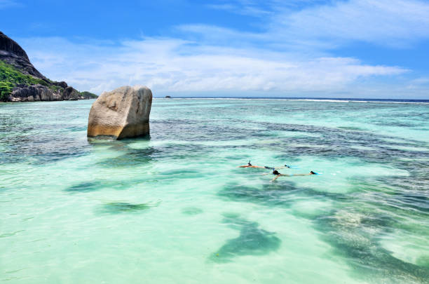 바다에서 스노클링 - 마헤 섬 뉴스 사진 이미지