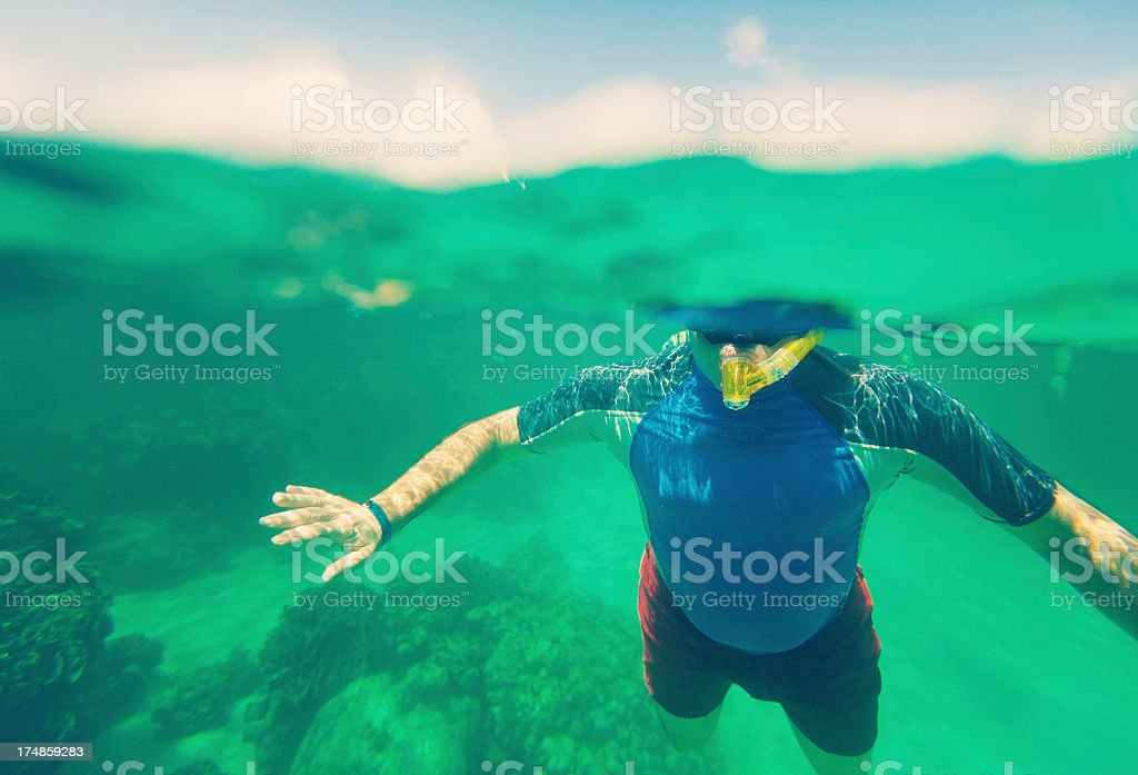snorkeling in the caribbean stock photo