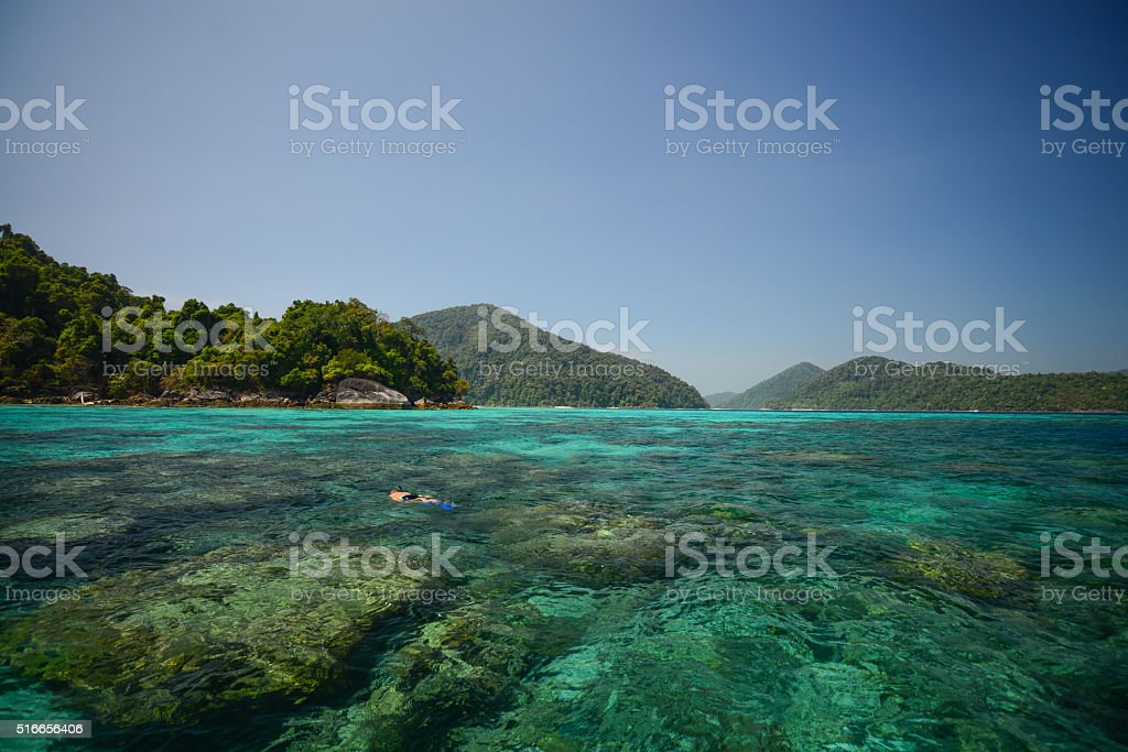 Snorkeling point with beautiful coralscape at Surin national park stock photo