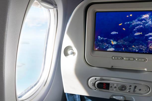 snorkling semester koncept - sky diving plane inside bildbanksfoton och bilder