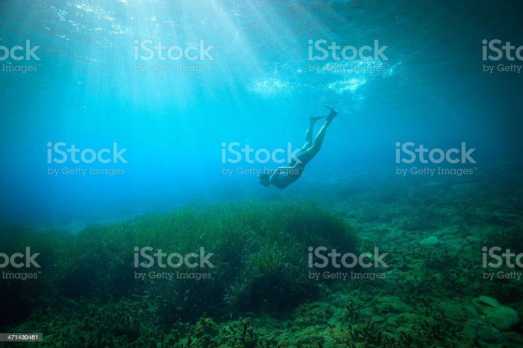 Snorkeling woman royalty-free stock photo