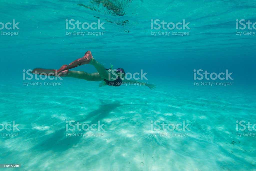 Snorkelling under the surface stock photo