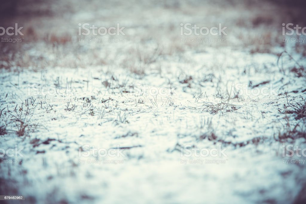 Snow and grass royalty-free stock photo