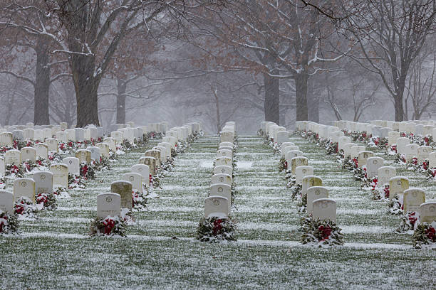 snow at arlington national cemetery - arlington national cemetery stock pictures, royalty-free photos & images