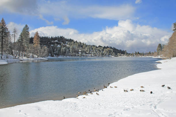 Snow at Lake Gregory, California stock photo