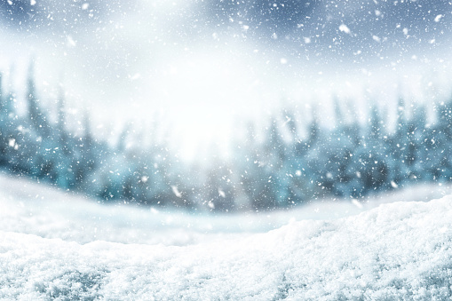 Snow background and tree. Winter backdrop with sunlight in morning time.