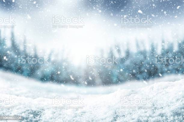 Snow Background And Tree Winter Backdrop With Sunlight In Morning Time - Fotografias de stock e mais imagens de A nevar