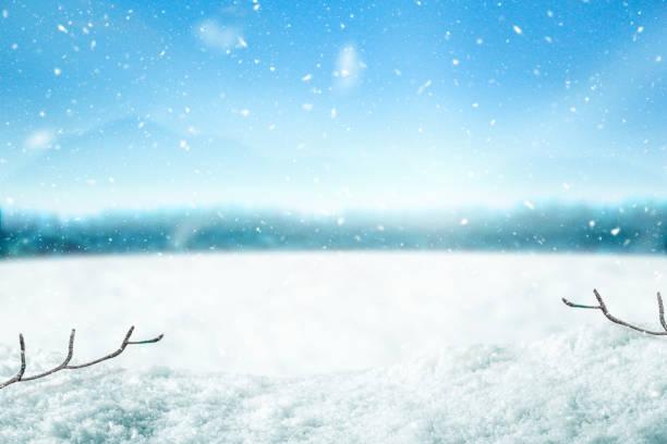 schnee-hintergrund und baum. winter hintergrund mit sonnenlicht am morgen rechtzeitig. frohe weihnachten und glückliches neues jahr. - schneeflocke sonnenaufgang stock-fotos und bilder
