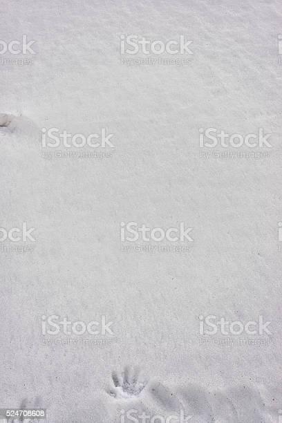Photo of Snow Background