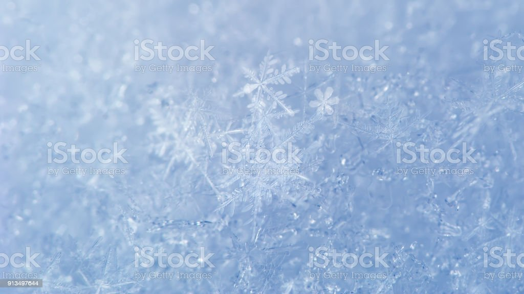 Snow background with detailed snowflakes stock photo
