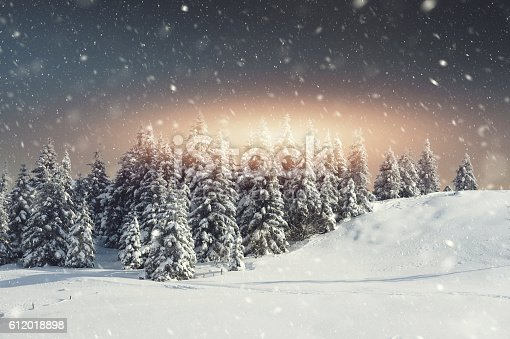 istock Snow blizzard and the sunrise 612018898