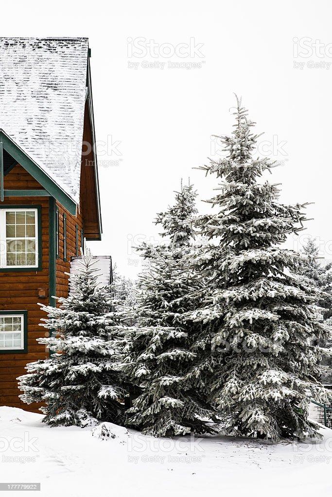 Snow Cabin stock photo
