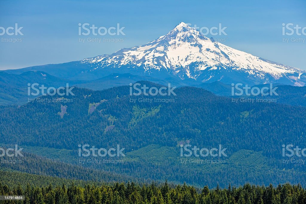 Snow capped Mount Hood with Forest in Foreground. royalty-free stock photo