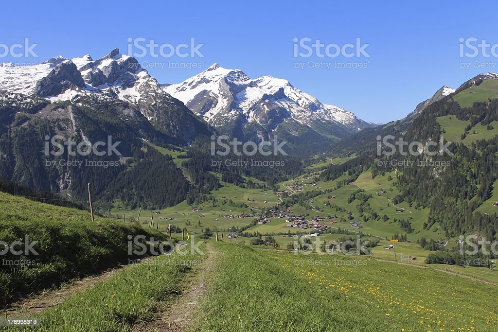Snow capped mountains and green meadow royalty-free stock photo
