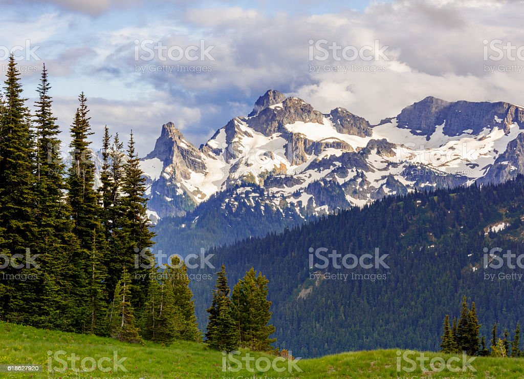 Snow Capped Mountains at Mt Rainier National Park stock photo