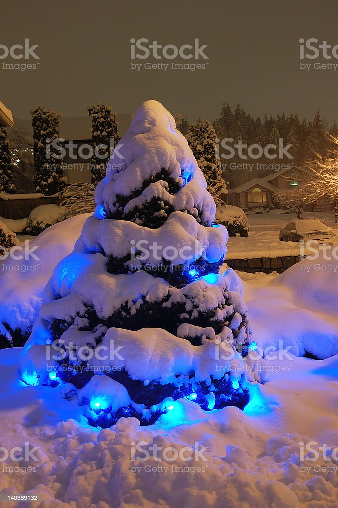 Snow Christmas Tree Stock Photo More Pictures Of Blue Istock