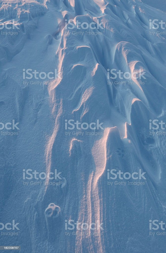 Snow colored by Arctic sunset. royalty-free stock photo