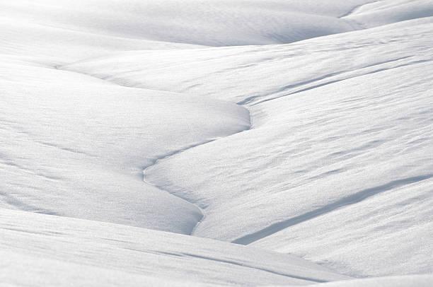 snow-cover – Foto