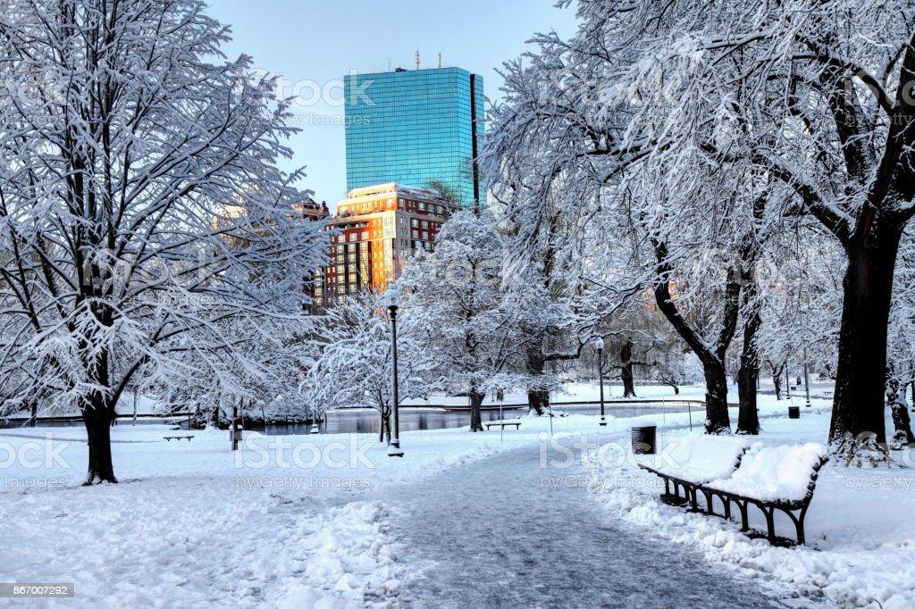 Snow covered Boston Public Garden stock photo