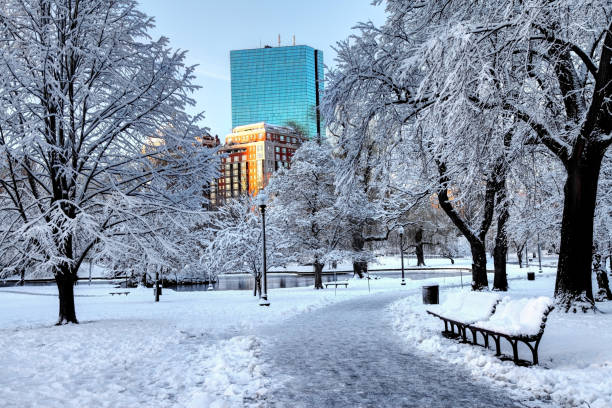Snow covered Boston Public Garden stock photo