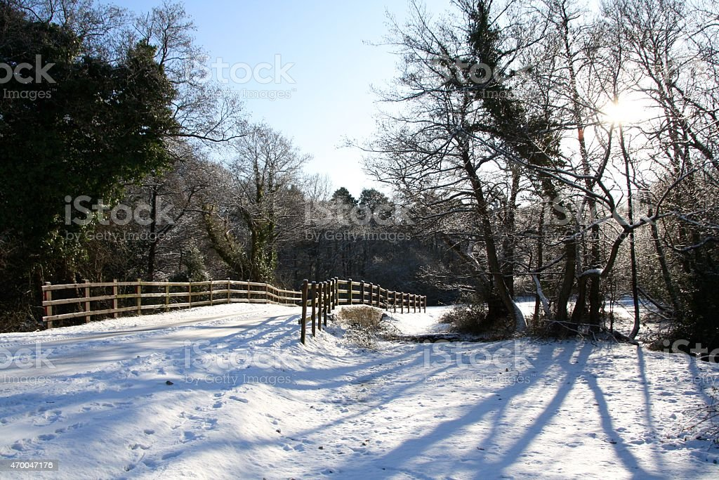 snow covered country road new forest national park stock photo