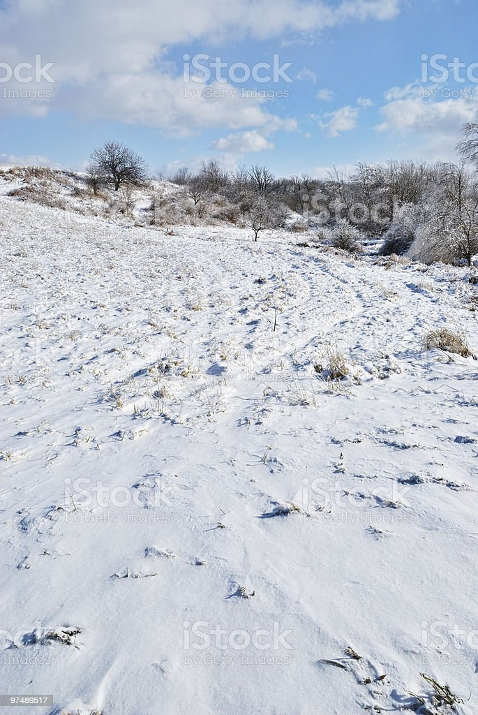Snow Covered Field royalty-free stock photo
