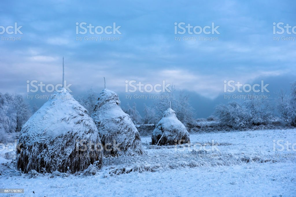 Snow covered haystacks stock photo