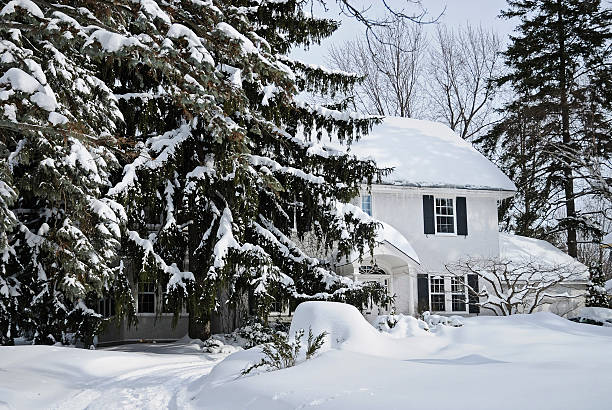 Snow covered house and fir trees A House after winter storm. Big snowbanks and snow covered firs in front of the house. russian dacha stock pictures, royalty-free photos & images