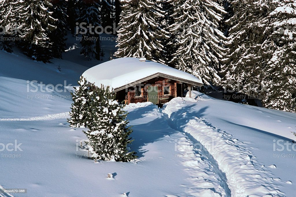 Snow covered house near forest royalty-free stock photo